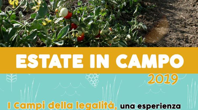 Campi Della Legalità 2019 – Estate In Campo!